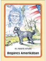 Bogáncs Amerikában
