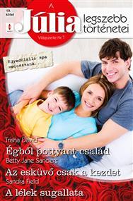 A Júlia legszebb történetei 19. kötet (Egyedülálló apa megosztaná…)